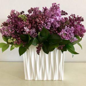 Lilac-03